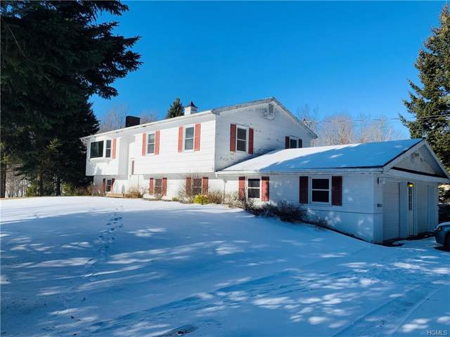453 Little Ireland Road, Livingston Manor, NY 12758 (MLS #6009784) :: William Raveis Baer & McIntosh