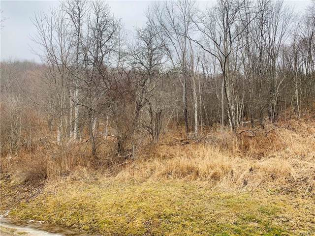 N/A Debruce Road, Livingston Manor, NY 12758 (MLS #6009934) :: William Raveis Baer & McIntosh