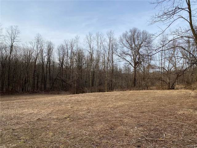 1414 State Route 32, Wallkill, NY 12589 (MLS #6010282) :: Cronin & Company Real Estate
