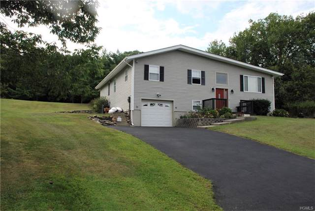 20 View Point Drive, Slate Hill, NY 10973 (MLS #6010683) :: Cronin & Company Real Estate