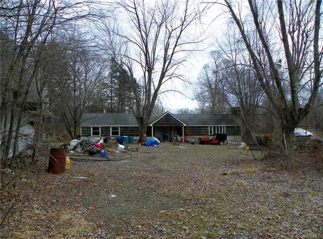 137 Lime Ridge Road, Poughquag, NY 12570 (MLS #6011191) :: William Raveis Legends Realty Group