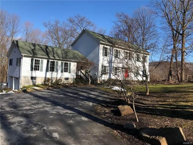 3 Old Mt Peter Road, Warwick, NY 10990 (MLS #6011545) :: William Raveis Baer & McIntosh