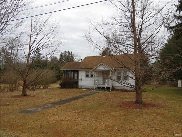 15 3rd Street, Narrowsburg, NY 12764 (MLS #6011678) :: Mark Boyland Real Estate Team