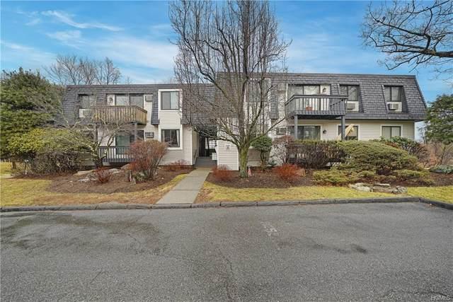 209 Drew Lane, Carmel, NY 10512 (MLS #6011682) :: Mark Seiden Real Estate Team