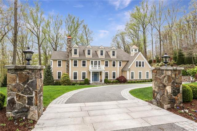 1 Cyntia Court, Mount Kisco, NY 10549 (MLS #6011731) :: Mark Boyland Real Estate Team
