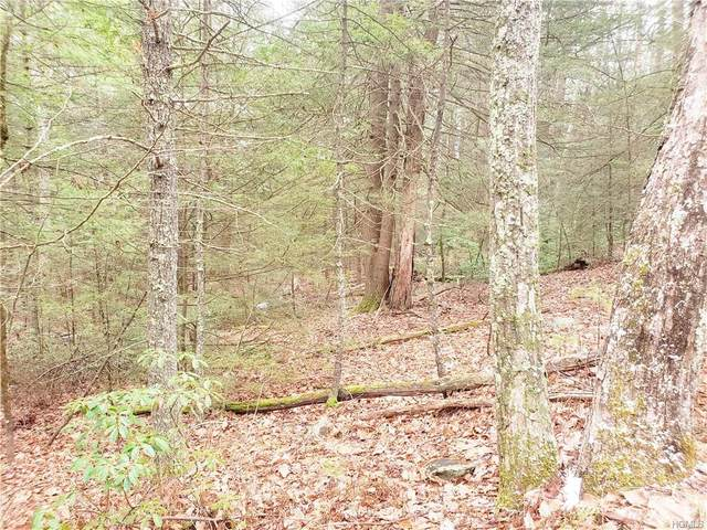 Rio Dam Road, Glen Spey, NY 12737 (MLS #6012058) :: William Raveis Baer & McIntosh