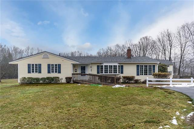 229 Warn Avenue, Pine Bush, NY 12566 (MLS #6012197) :: Cronin & Company Real Estate