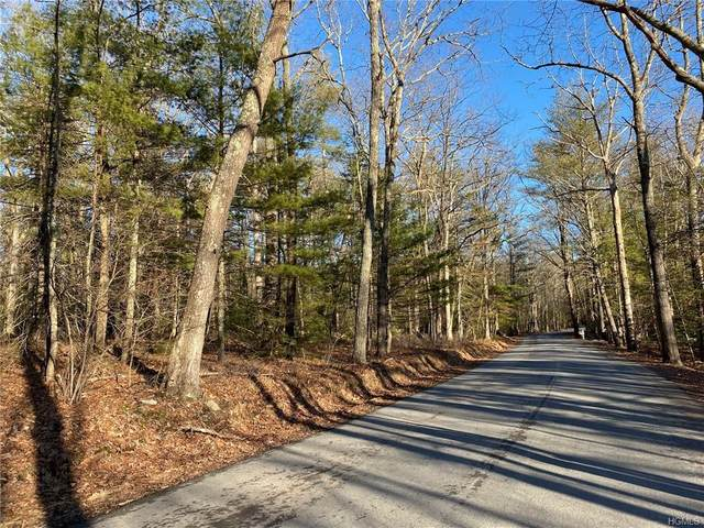 88 Wilson Road, Sparrowbush, NY 12780 (MLS #6012213) :: William Raveis Baer & McIntosh