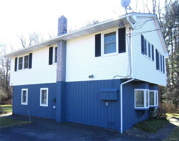 113 St Josephs Hill Road, Forestburgh, NY 12777 (MLS #H6012389) :: Cronin & Company Real Estate