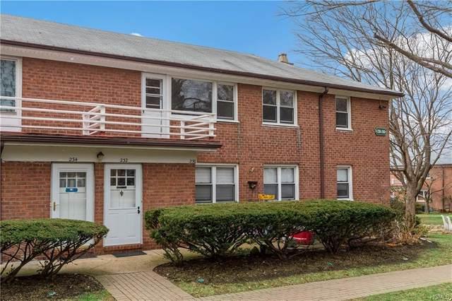 232 S Buckhout #232, Irvington, NY 10533 (MLS #6012478) :: William Raveis Legends Realty Group