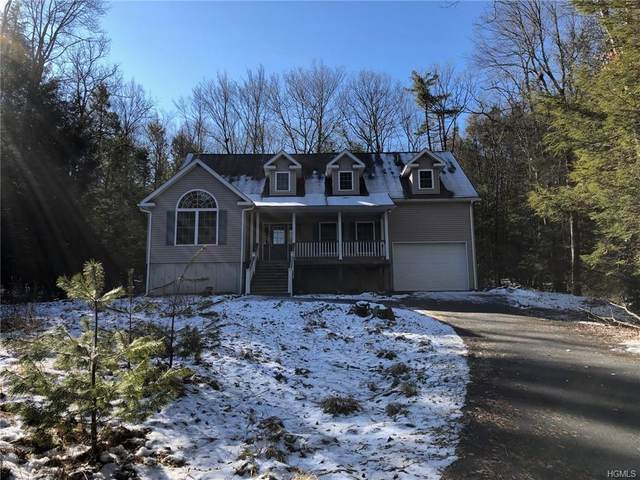 66 Highland Lake Road, Eldred, NY 12732 (MLS #6012841) :: William Raveis Baer & McIntosh