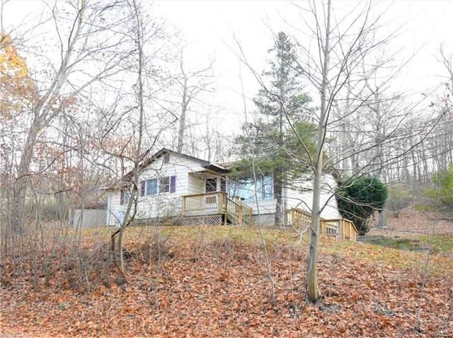 85 Brook Road, Middletown, NY 10941 (MLS #6013530) :: William Raveis Legends Realty Group