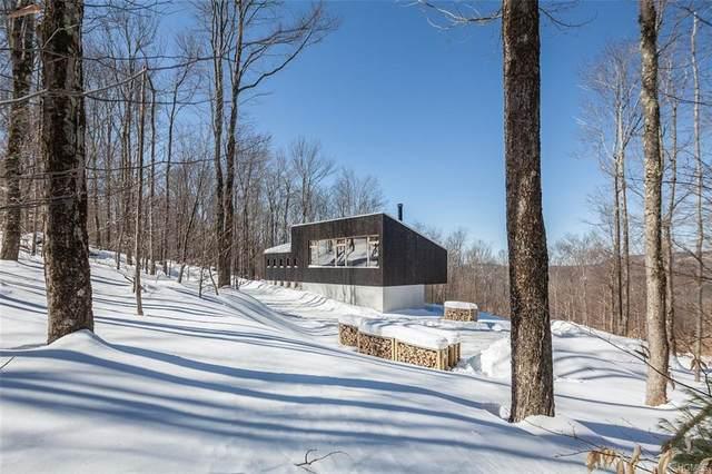 127 Kawlija Road, Grahamsville, NY 12740 (MLS #6013658) :: Mark Boyland Real Estate Team