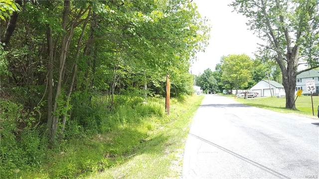 Co Hwy 73, Bethel, NY 12783 (MLS #H6014050) :: William Raveis Baer & McIntosh