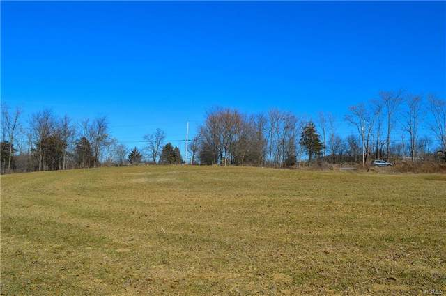 Prospect Road, Blooming Grove, NY 10918 (MLS #H6014731) :: William Raveis Legends Realty Group