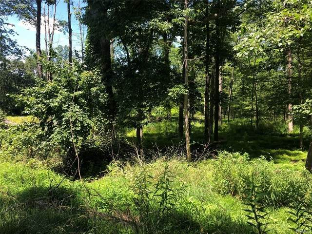 Lot #1 Peenpack Trail, Huguenot, NY 12746 (MLS #6014780) :: William Raveis Baer & McIntosh