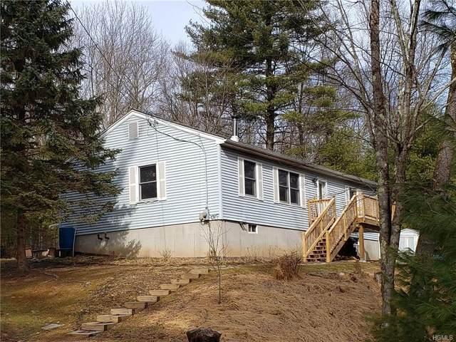 340 White Road, Glen Spey, NY 12737 (MLS #6014809) :: Cronin & Company Real Estate