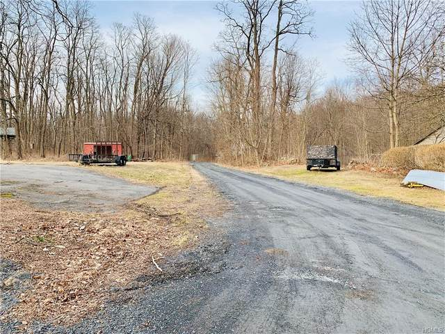 35 Hoppenstedt Road, Wallkill, NY 12589 (MLS #6014999) :: Cronin & Company Real Estate