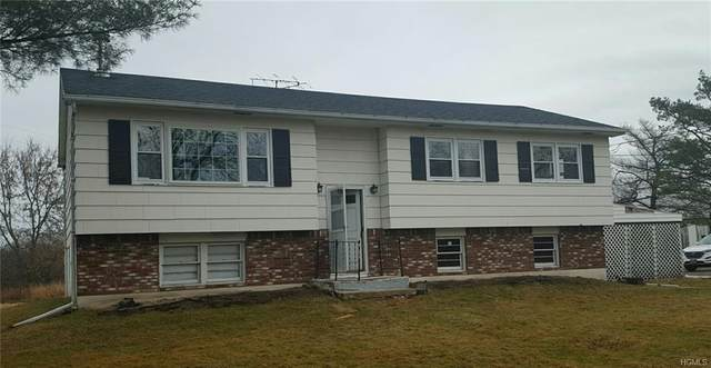 2032 Mt Hope Road, Middletown, NY 10940 (MLS #6015064) :: Mark Boyland Real Estate Team
