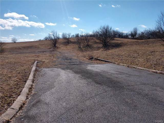 State Hwy. Route 6, Slate Hill, NY 10973 (MLS #6015166) :: Cronin & Company Real Estate