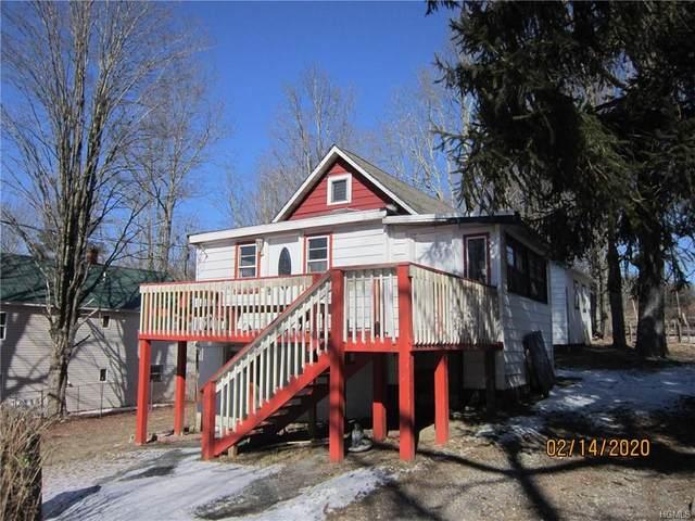 18 E Maple Street, Mountain Dale, NY 12763 (MLS #6015358) :: William Raveis Baer & McIntosh
