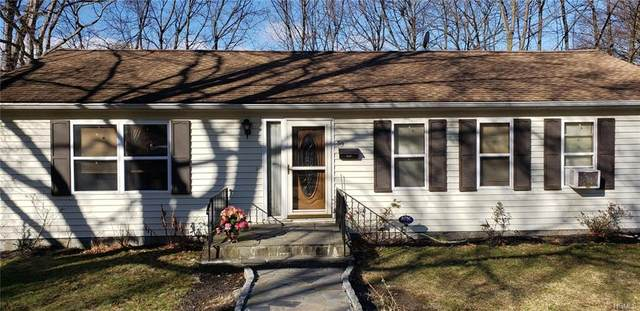 59 Shipp Street, Newburgh, NY 12550 (MLS #6015547) :: Cronin & Company Real Estate