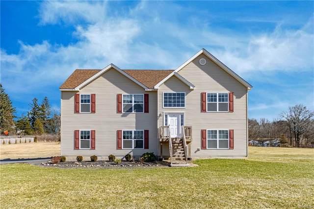 452 Plains Road, Wallkill, NY 12589 (MLS #6015623) :: Mark Boyland Real Estate Team