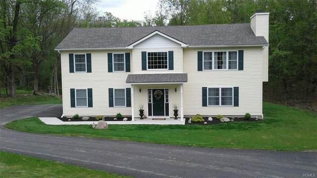 646 Craigville Road, Chester, NY 10918 (MLS #6015979) :: William Raveis Baer & McIntosh
