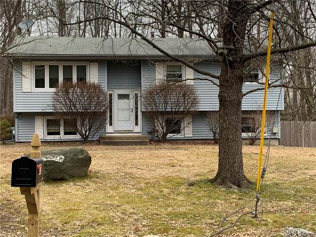 34 Camp Hill Road, Pomona, NY 10970 (MLS #6016282) :: William Raveis Legends Realty Group