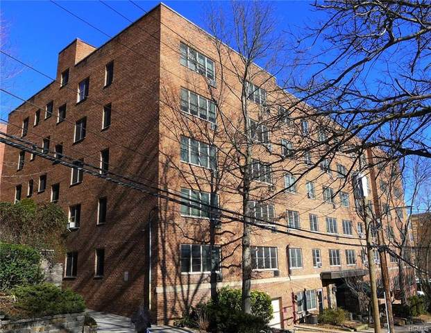 25 Franklin Avenue 3 F, White Plains, NY 10601 (MLS #6016560) :: Marciano Team at Keller Williams NY Realty