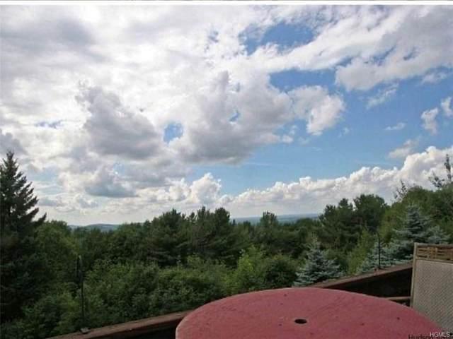 Sky View Drive, Stamford, NY 12167 (MLS #H6016654) :: Marciano Team at Keller Williams NY Realty