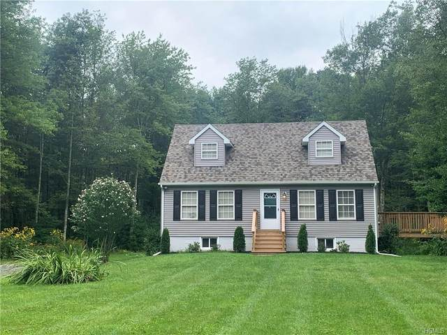 1258 Nys Hwy 17B, Bethel, NY 12762 (MLS #H6017575) :: William Raveis Baer & McIntosh