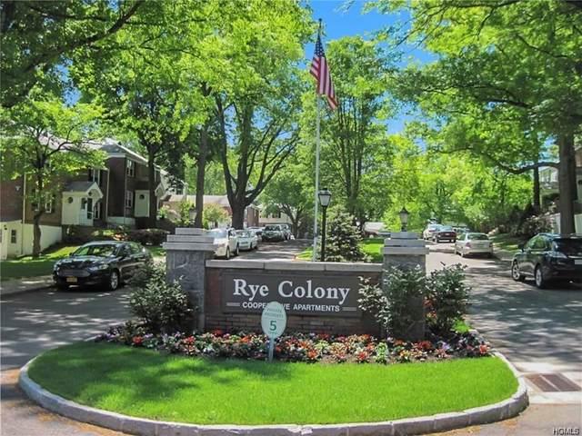 214 Peck Avenue 214A, Rye, NY 10580 (MLS #6017808) :: William Raveis Baer & McIntosh