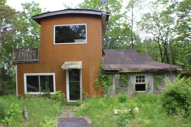 2 Green Briar Road, Port Jervis, NY 12771 (MLS #6018294) :: The McGovern Caplicki Team