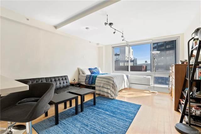13-11 Jackson, Long Island City, NY 11101 (MLS #6018346) :: Mark Seiden Real Estate Team