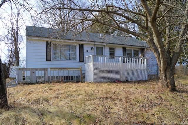 53 Burdick Road, Patterson, NY 12563 (MLS #6018462) :: William Raveis Baer & McIntosh