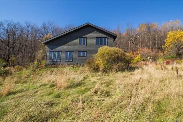 625 Herr Road, Andes, NY 13731 (MLS #H6018653) :: Mark Boyland Real Estate Team