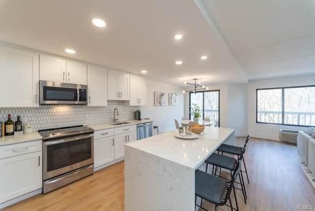 500 High Point Drive #513, Greenburgh, NY 10530 (MLS #H6018670) :: Kevin Kalyan Realty, Inc.