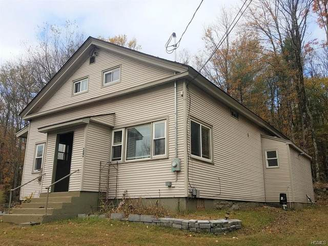 474 State Route 17B, Thompson, NY 12701 (MLS #H6018923) :: Cronin & Company Real Estate