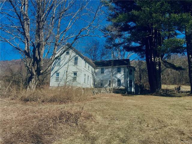 33 Hardenburg Road, Callicoon, NY 12758 (MLS #H6019020) :: William Raveis Legends Realty Group