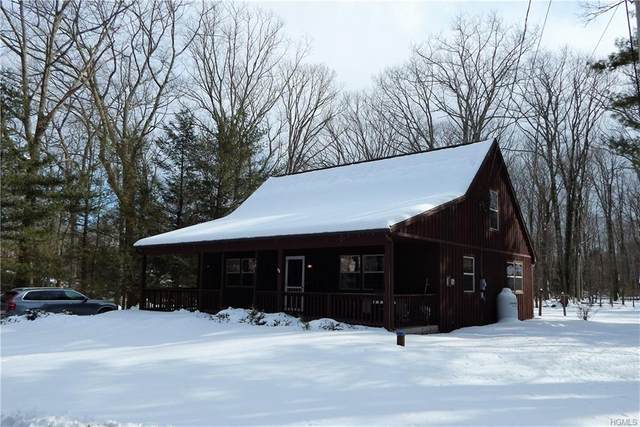 36 Wolf Pond Road, Wurtsboro, NY 12790 (MLS #6019559) :: William Raveis Baer & McIntosh