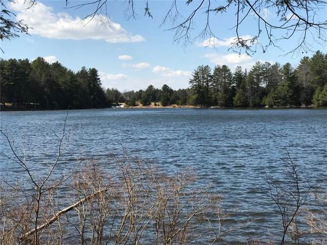 Lot 19 Deer Meadow, Bethel, NY 12720 (MLS #6019617) :: William Raveis Baer & McIntosh