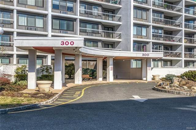 300 High Point Drive #613, Hartsdale, NY 10530 (MLS #H6019781) :: Nicole Burke, MBA | Charles Rutenberg Realty