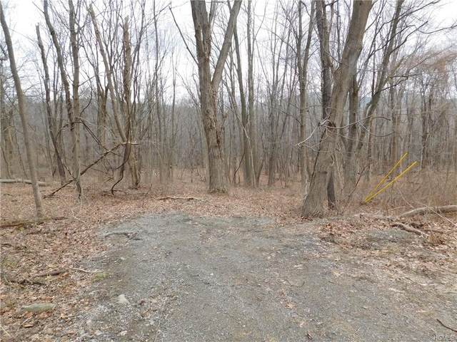 Rockwald Road, Philipstown, NY 10516 (MLS #H6020623) :: The Home Team
