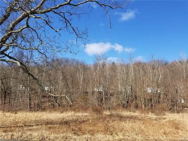 11 Cossu, Mamakating, NY 12721 (MLS #H6020728) :: Cronin & Company Real Estate