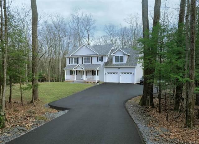 80 M And M Road, Wallkill Town, NY 10940 (MLS #H6021159) :: Cronin & Company Real Estate