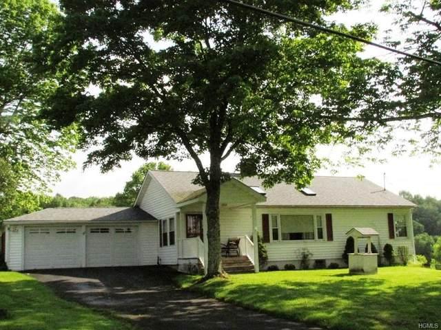 26 Hessinger Lare Road, Callicoon, NY 12791 (MLS #H6022538) :: William Raveis Baer & McIntosh