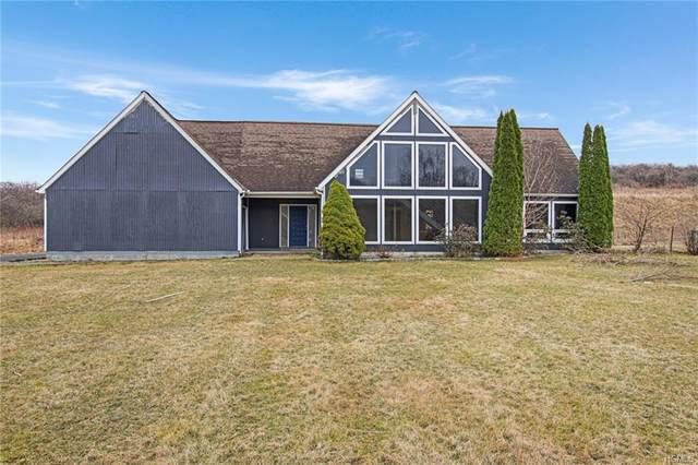866 Lattintown Road, Marlboro, NY 12547 (MLS #H6023346) :: Signature Premier Properties