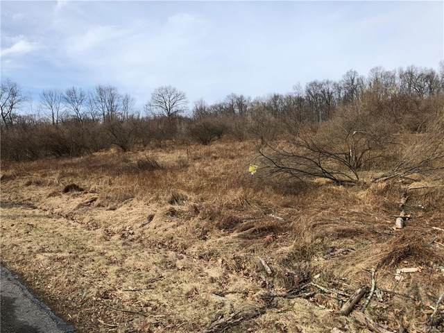 NW Mandys Road, Minisink, NY 10998 (MLS #H6023628) :: Cronin & Company Real Estate