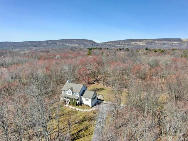 1414 Greenville Turnpike, Greenville, NY 12771 (MLS #H6023857) :: William Raveis Legends Realty Group